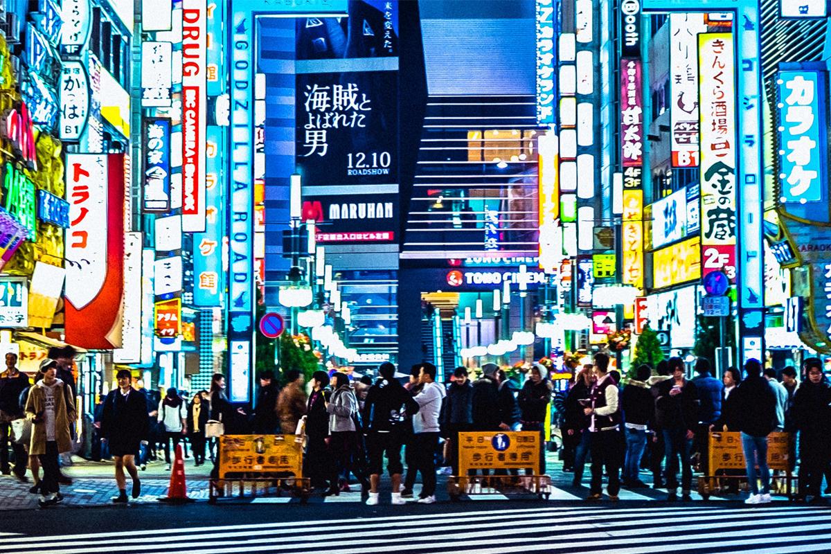 Japan Snook 2017