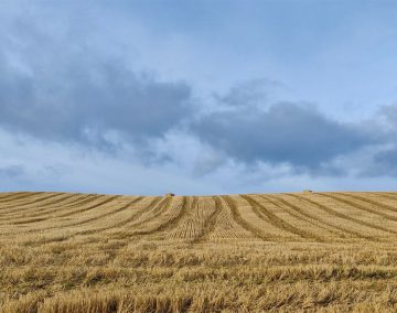 A photo of a field in the British countryside